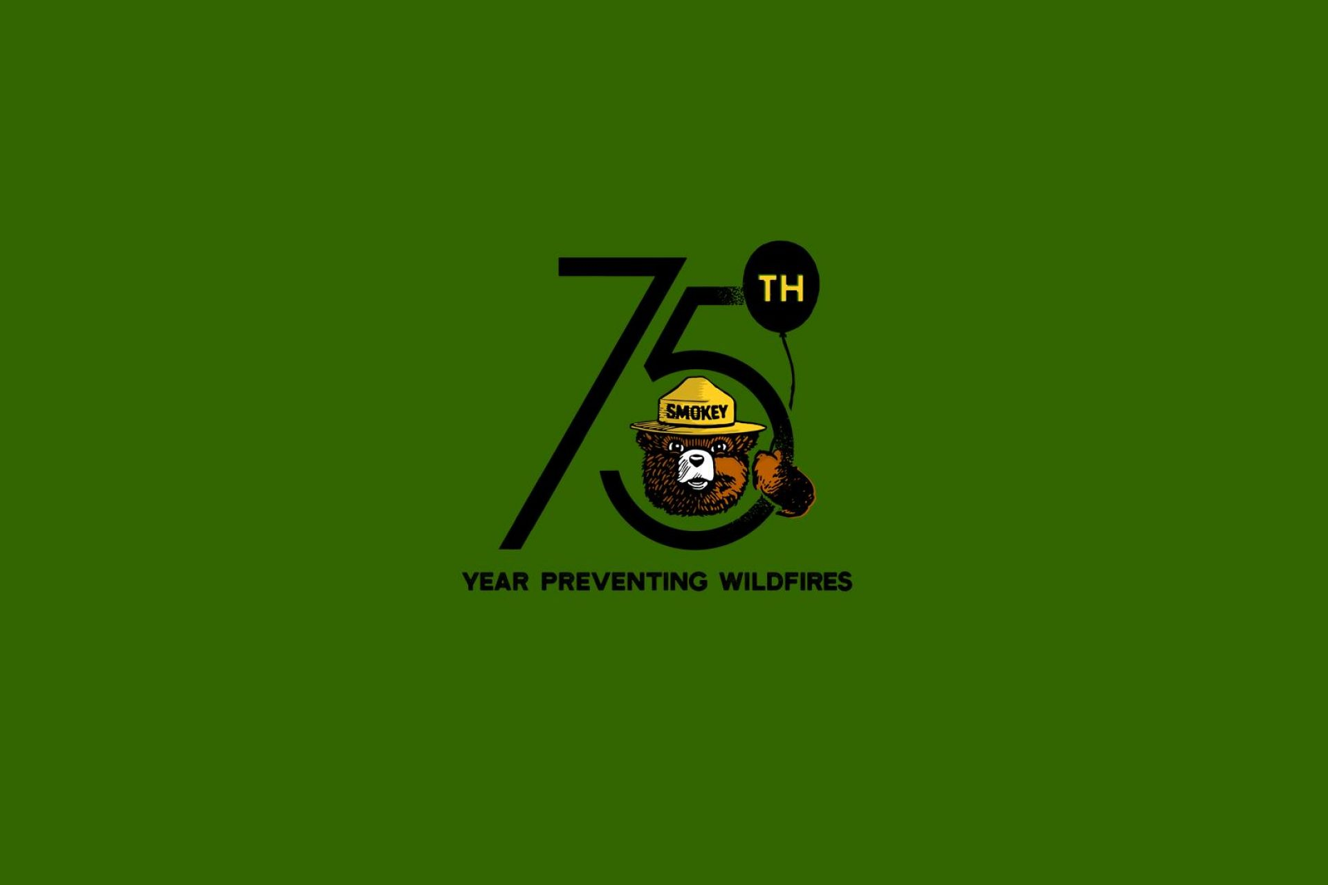 75-years-of-smokey-bear-fighting-wildfires-flag