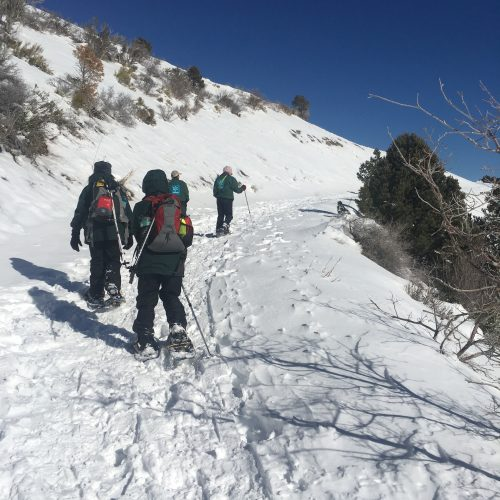 snow shoe hike up hill