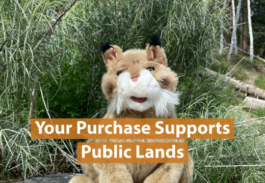 Bobcat puppet on boulder in front of a stand of aspens with title Your purchase supports public lands