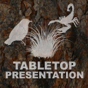 Tabletop Presentation