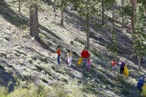 families cleaning litter from a hillside