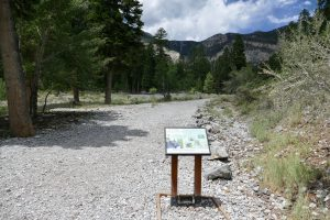 boot brush station at MJF trailhead