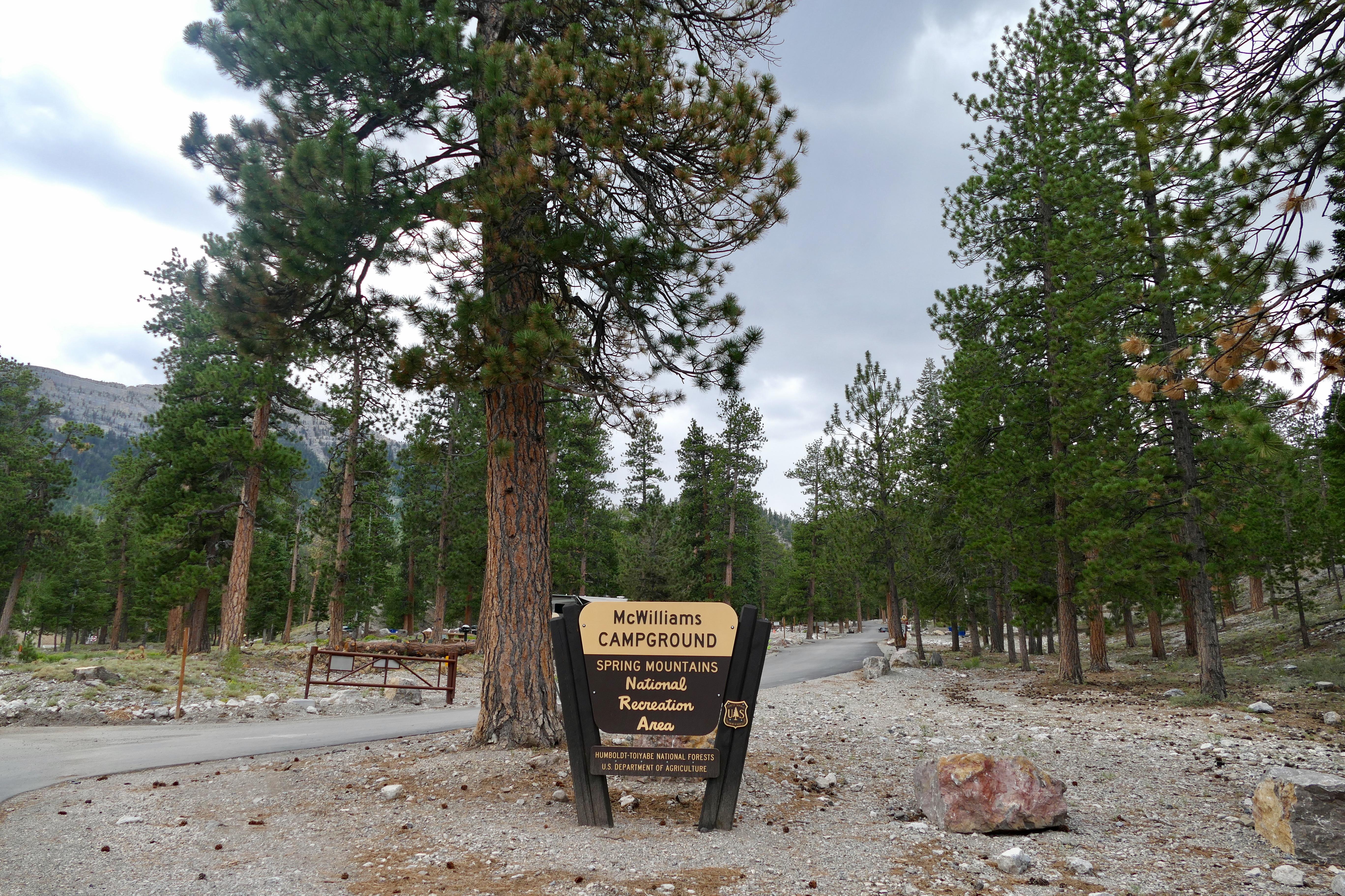 McWilliams Campground | Las Vegas, NV | Go Mt. Charleston