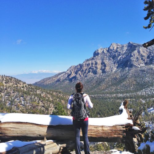 hiker-overlooking-lee-canyon-go-mt-charleston