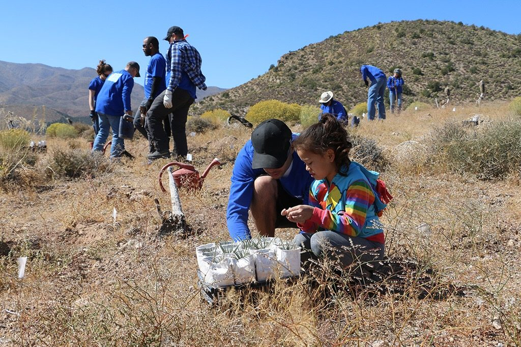 Volunteers of all ages helped plant 1500 joshua tree seedlings for National Public Lands Day 2019