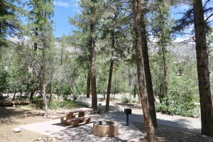 Kyle Canyon picnic site