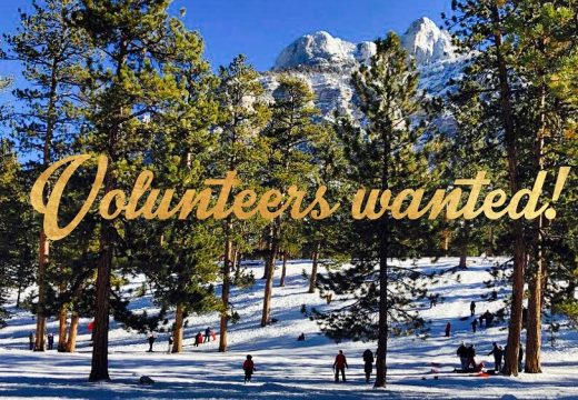 Winter volunteers wanted over a pine trees in the snowy mountains with sledders in the background